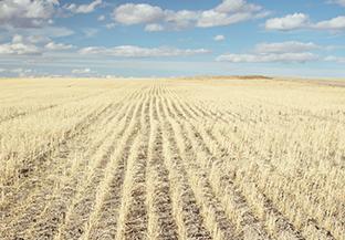 Rural Canada image